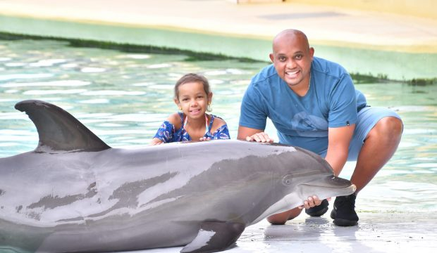 Lizea rencontre les dauphins