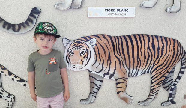 Gabin a fait un séjour au zoo de Beauval