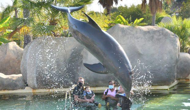 Mathéo au plus près des dauphins !