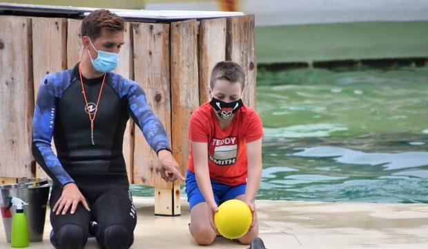 Tayler a approché les dauphins