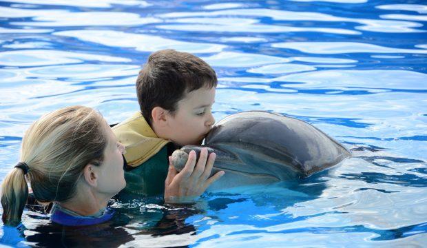 Téo a approché les dauphins