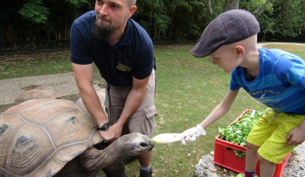 Mathys a passé une journée avec les soigneurs du Zoo de Beauval