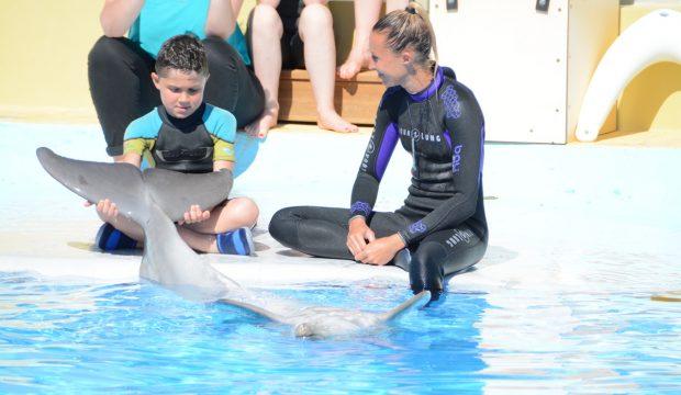 Baptiste a approché les dauphins