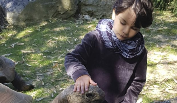 Adam a fait un séjour au zoo de Beauval