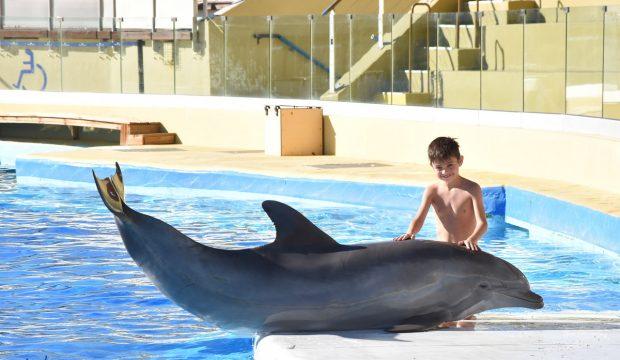 Timothée a nagé avec les dauphins