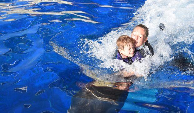 Léo a nagé  avec les dauphins