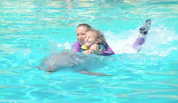 Leya a approché les dauphins