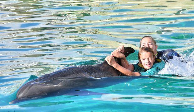 Emma a nagé avec les dauphins