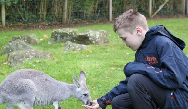 Baptiste a fait un séjour au Zoo de la Flèche