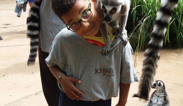 Timael a fait un séjour au zoo de la Flèche
