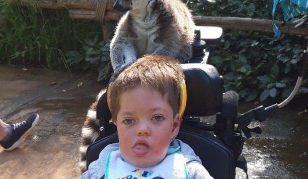 Jules a fait un séjour au zoo de la Flèche