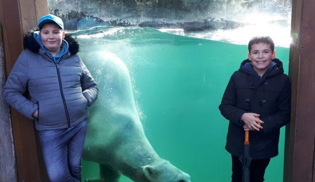 Elisa a fait un séjour au zoo de la Flèche