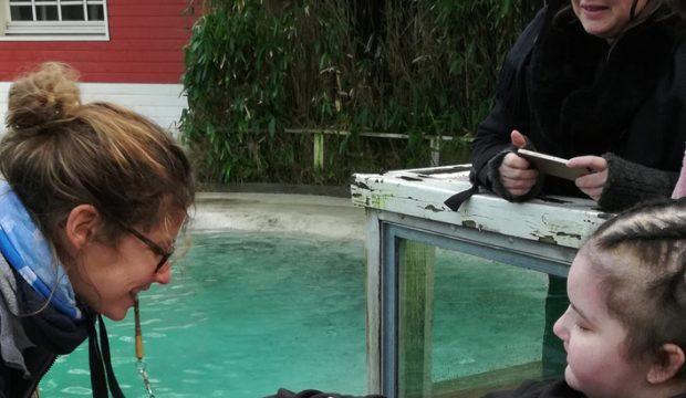 Adèle a fait un séjour au zoo de la Flèche