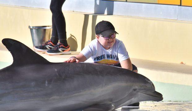 NOAH a approché les dauphins