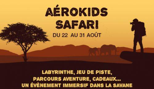 La savane à Aéroville