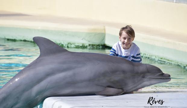 Antonin a nagé avec les dauphins